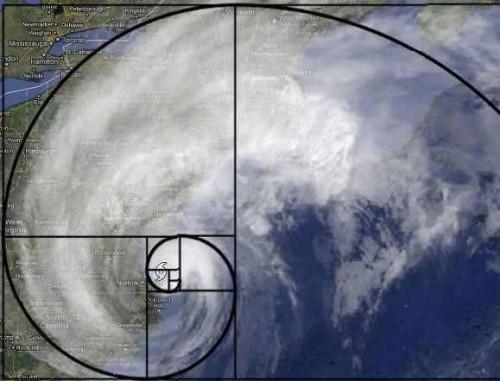Myers Logo & Hurricane