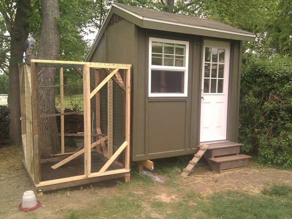 Saltbox Shed and Chicken Run